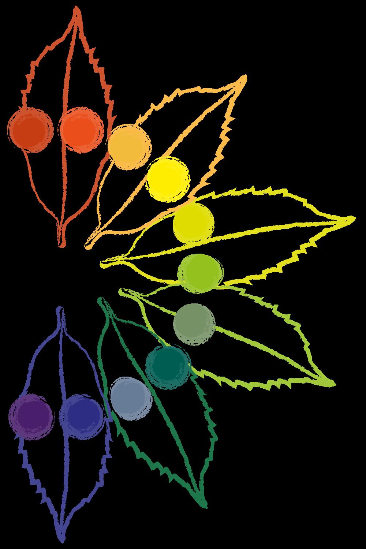 Farbkreis Blätter